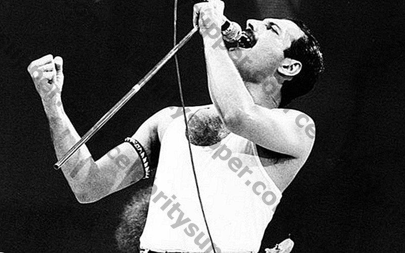 Freddie Mercury Networth