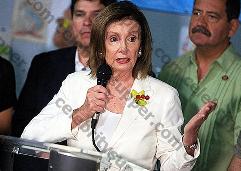 Nancy Pelosi Networth