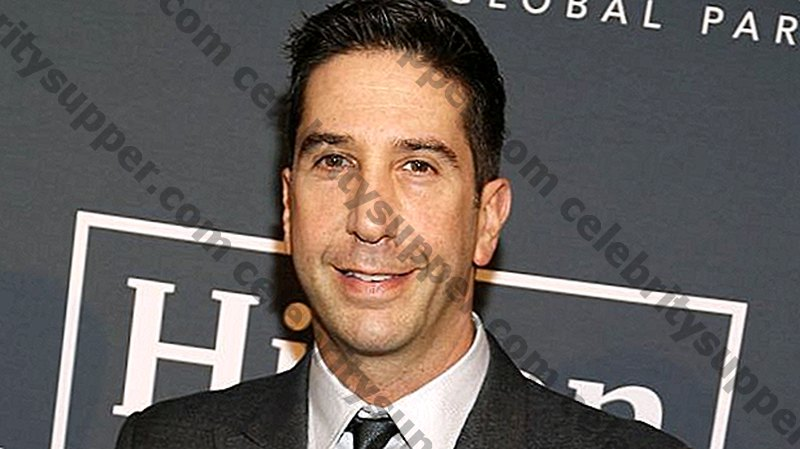 David Schwimmer Networth