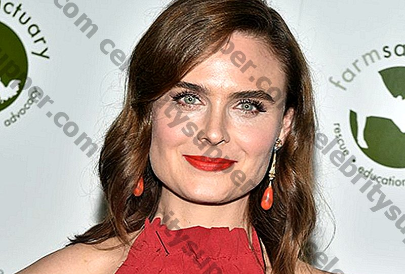 Emily Deschanel Networth