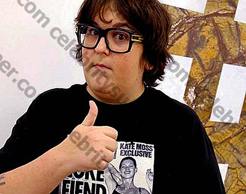 Valor net d'Andy Milonakis.