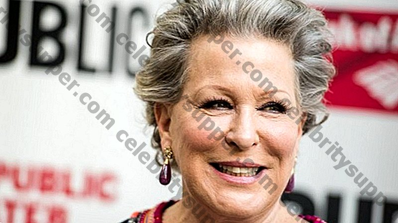 Bette Midler Llista el seu triplex luxós de la part superior est per 50 milions de dòlars: aquí es veu la mirada interior!